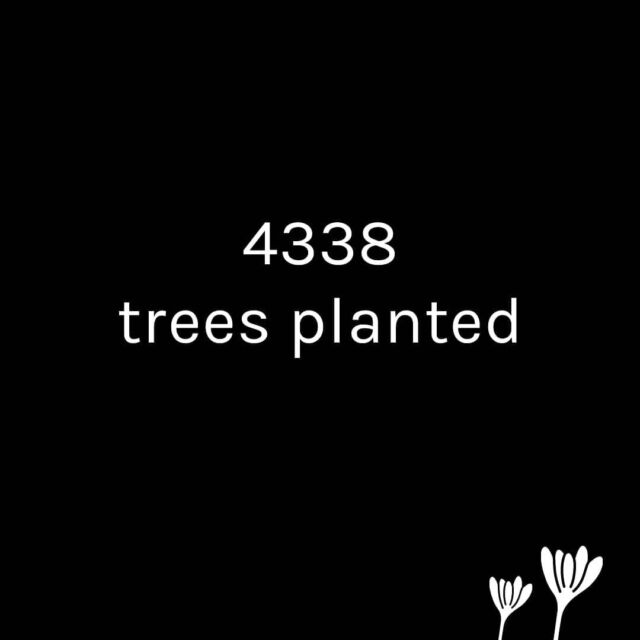 We had so much difficulties to face since Corona have changed our lifes... but we are still there, still working. Since we started to collaborate with @reforest_action we have planted 4338 trees. I'm so thankfull for this ! #aboutcolchik #bethechange #greenfashion #positivefashion #permafashion #slowfashion #sustenablefashion #ethicalfashion