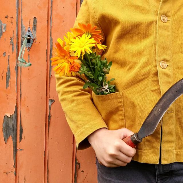 Last flowers from the garden 💛 Our rust color ist just perfect for autumn 🍂 #gardening #slowlife #childhoodunplugged #autumncolors #rustcolor #aboutcolchik #colchikjacket #workwear #workwearforkids #workwearjacket #vestedepeintre #vestedetravail #buyoneplantone #myclotheshaveamemory #colchikrust